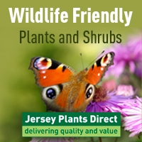 Jersey Plants FREE DELIVERY on EVERYTHING!